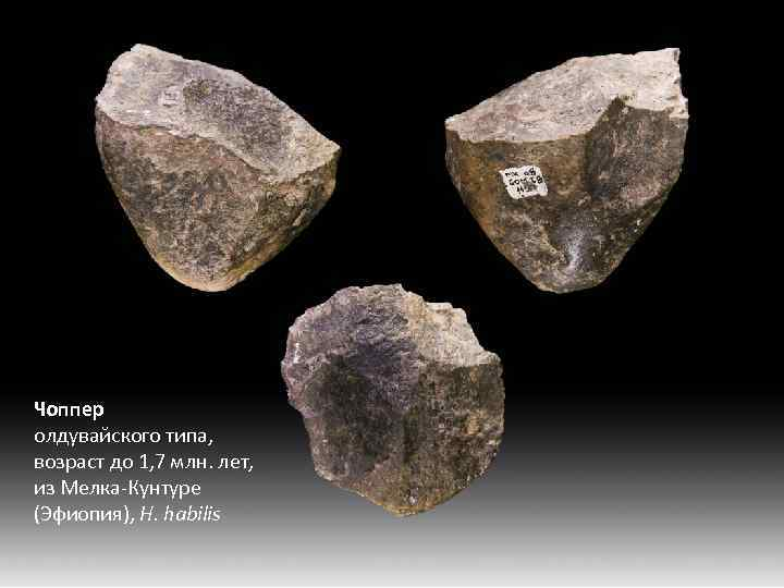 Чоппер олдувайского типа, возраст до 1, 7 млн. лет, из Мелка-Кунтуре (Эфиопия), H. habilis