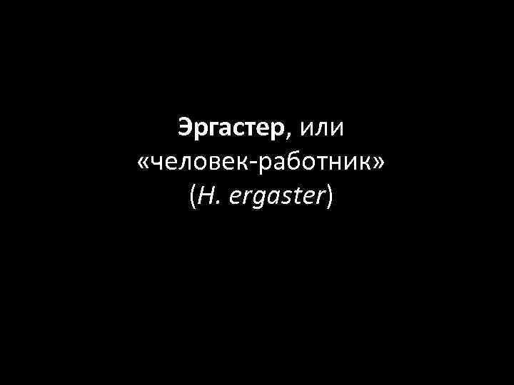 Эргастер, или «человек-работник» (H. ergaster)