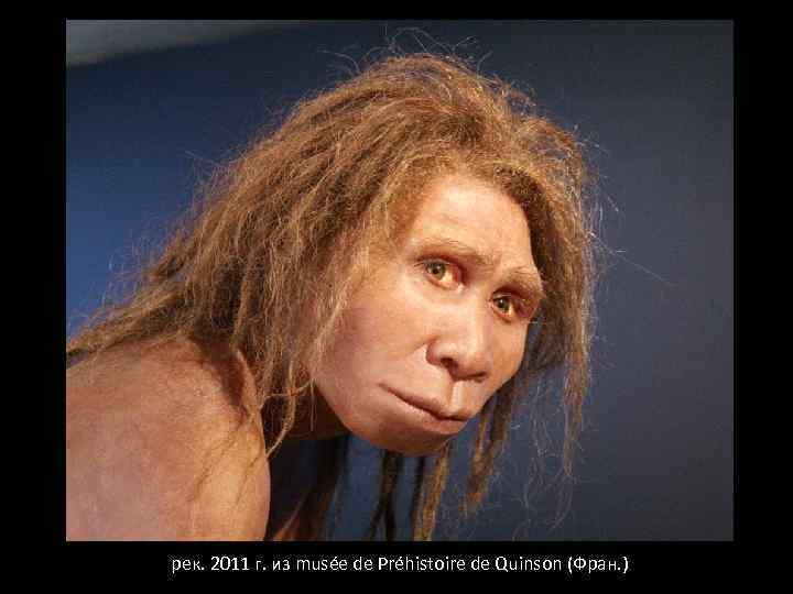 рек. 2011 г. из musée de Préhistoire de Quinson (Фран. )