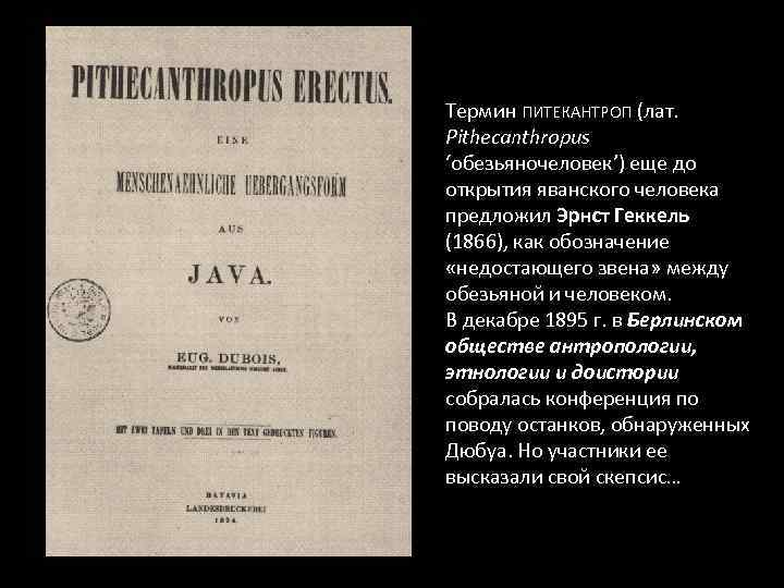 Термин ПИТЕКАНТРОП (лат. Pithecanthropus 'обезьяночеловек') еще до открытия яванского человека предложил Эрнст Геккель (1866),
