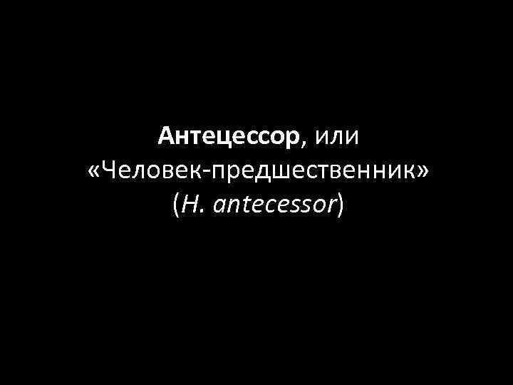 Антецессор, или «Человек-предшественник» (H. antecessor)