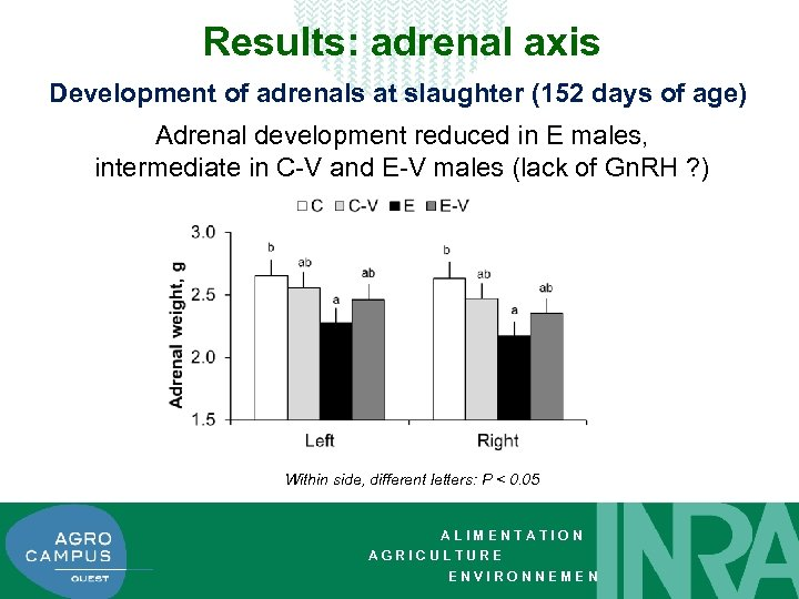 Results: adrenal axis Development of adrenals at slaughter (152 days of age) Adrenal development