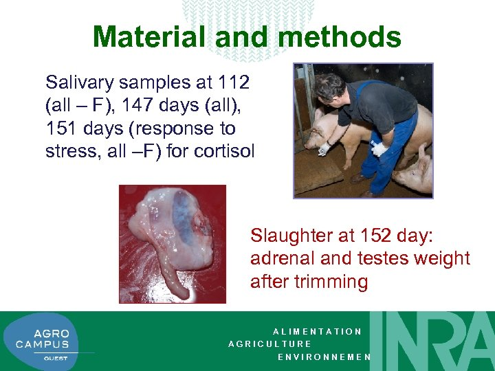 Material and methods Salivary samples at 112 (all – F), 147 days (all), 151