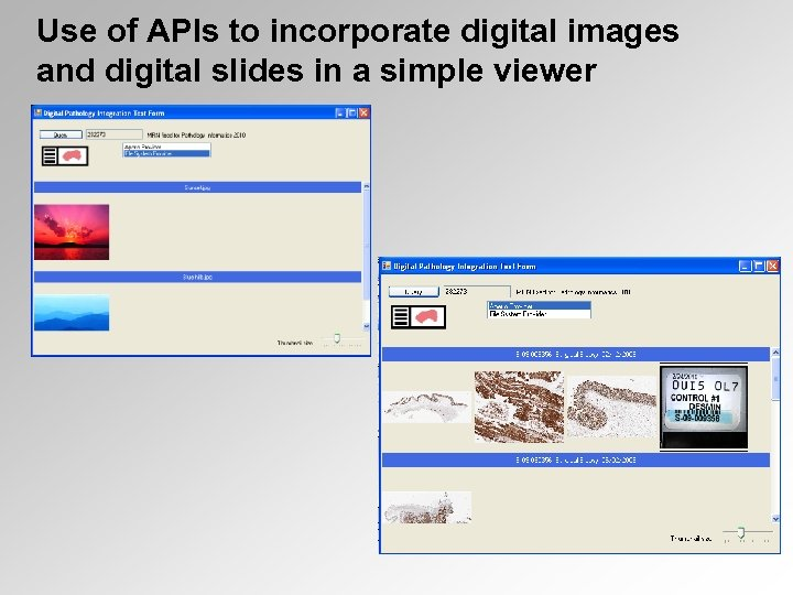 Use of APIs to incorporate digital images and digital slides in a simple viewer