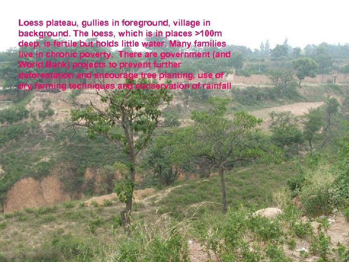 Loess plateau, gullies in foreground, village in background. The loess, which is in places