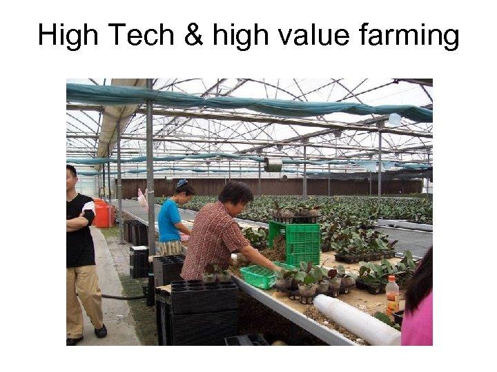 High Tech & high value farming