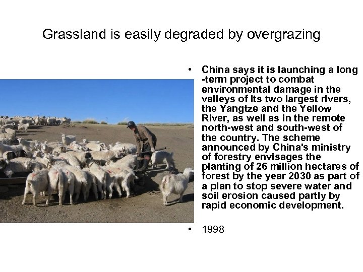 Grassland is easily degraded by overgrazing • China says it is launching a long