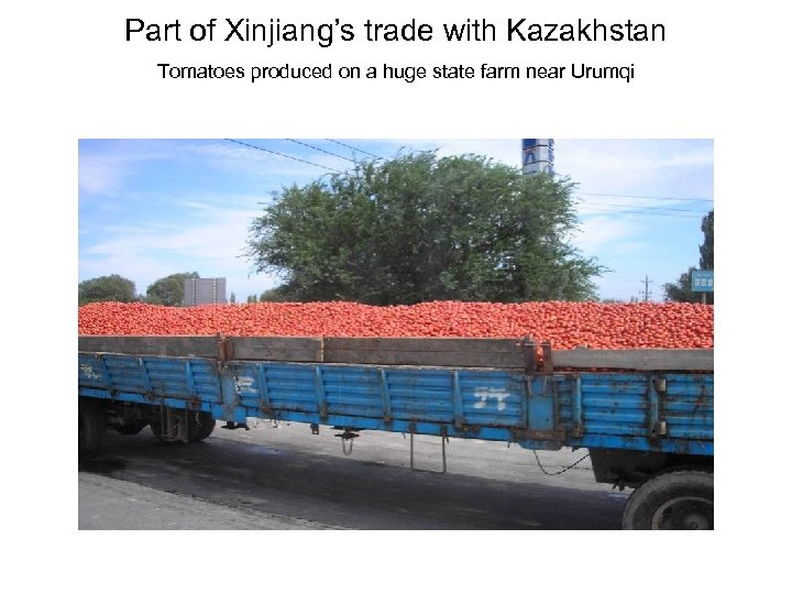 Part of Xinjiang's trade with Kazakhstan Tomatoes produced on a huge state farm near