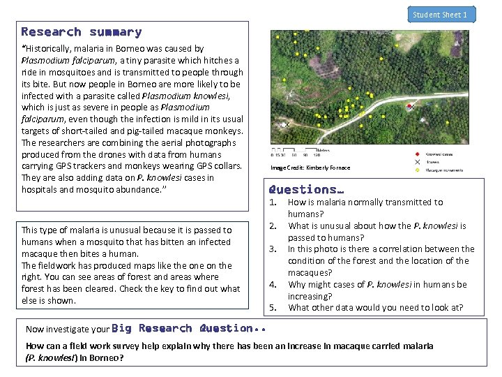 """Student Sheet 1 Research summary """"Historically, malaria in Borneo was caused by Plasmodium falciparum,"""