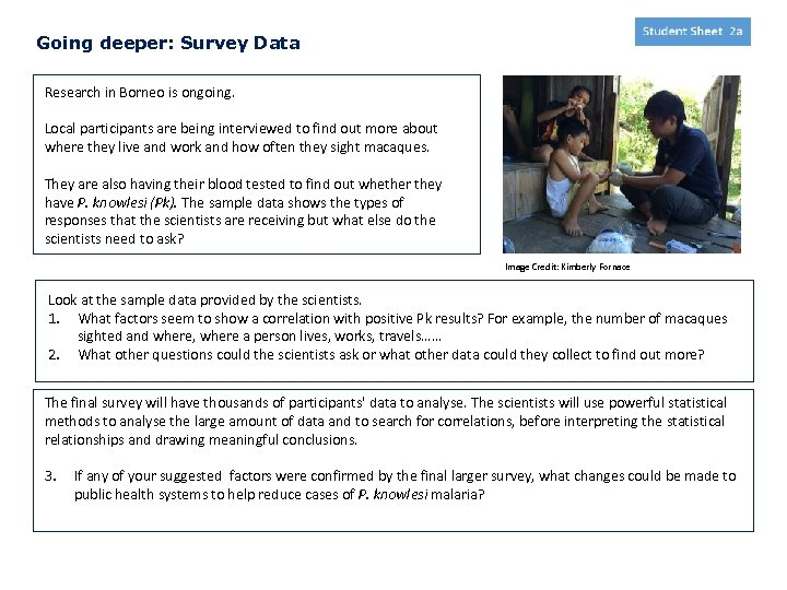 Going deeper: Survey Data Research in Borneo is ongoing. Local participants are being interviewed