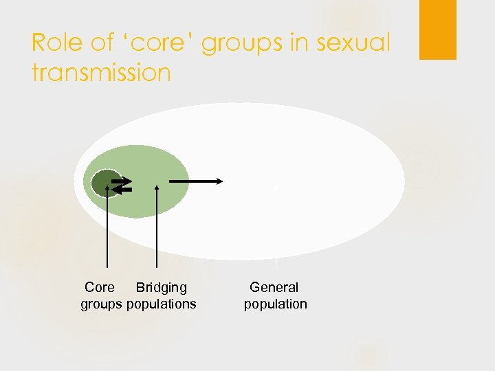 Role of 'core' groups in sexual transmission Core Bridging groups populations General population