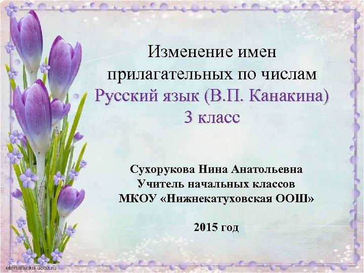 Изменение имен прилагательных по числам Русский язык (В. П. Канакина) 3 класс Сухорукова Нина