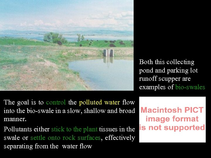 Both this collecting pond and parking lot runoff scupper are examples of bio-swales The