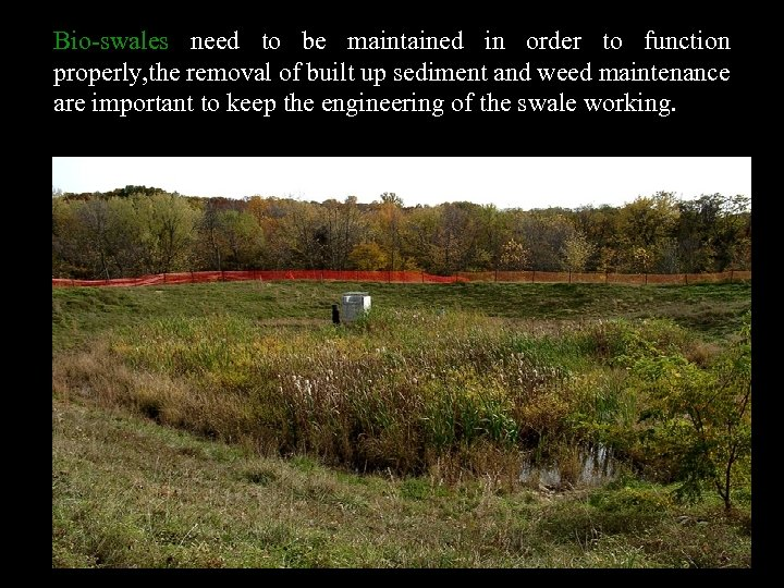 Bio-swales need to be maintained in order to function properly, the removal of built