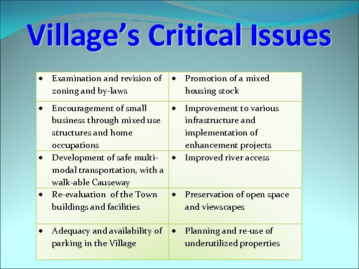 Village's Critical Issues Examination and revision of zoning and by-laws Encouragement of small business