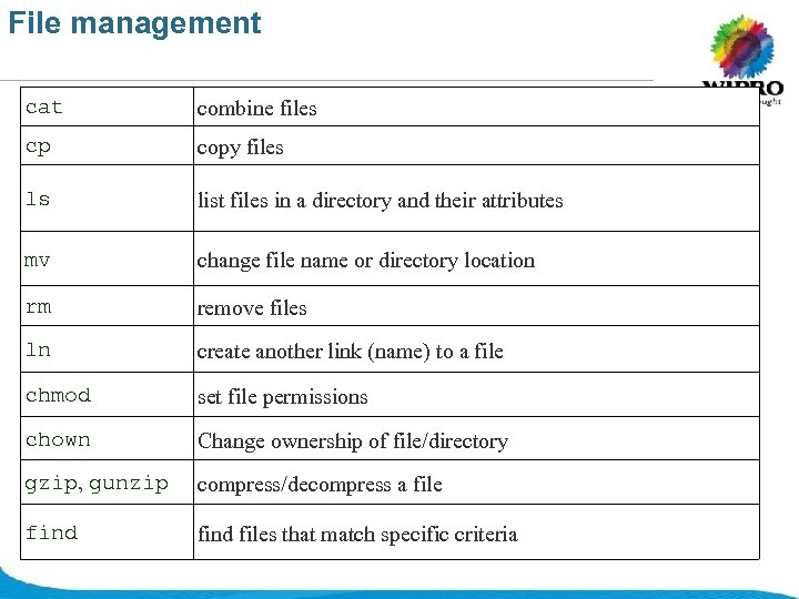 File management cat combine files cp copy files ls list files in a directory