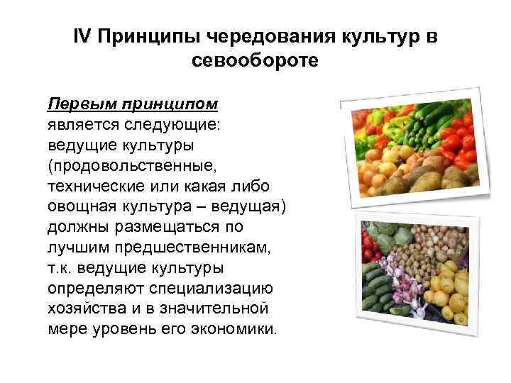 IV Принципы чередования культур в севообороте Первым принципом является следующие: ведущие культуры (продовольственные, технические