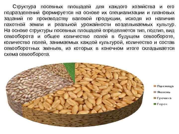 Структура посевных площадей для каждого хозяйства и его подразделений формируется на основе их специализации