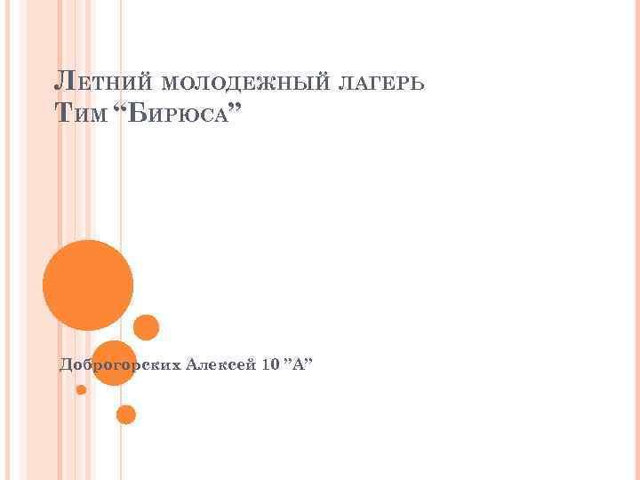 """ЛЕТНИЙ МОЛОДЕЖНЫЙ ЛАГЕРЬ ТИМ """"БИРЮСА"""" Доброгорских Алексей 10 """"А"""""""