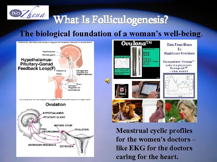 What Is Folliculogenesis? The biological foundation of a woman's well-being. Menstrual cyclic profiles for