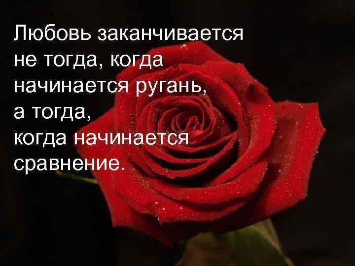 Любовь заканчивается не тогда, когда начинается ругань, а тогда, когда начинается сравнение.