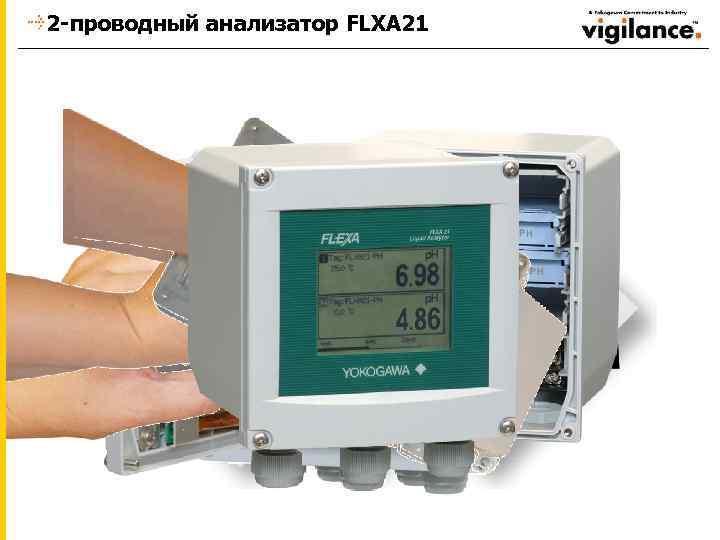 2 -проводный анализатор FLXA 21