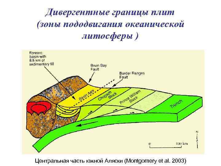 Дивергентные границы плит (зоны пододвигания океанической литосферы ) Центральная часть южной Аляски (Montgomery et