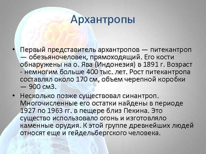 Архантропы • Первый представитель архантропов — питекантроп — обезьяночеловек, прямоходящий. Его кости обнаружены на