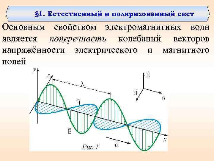 § 1. Естественный и поляризованный свет Основным свойством электромагнитных волн является поперечность колебаний векторов