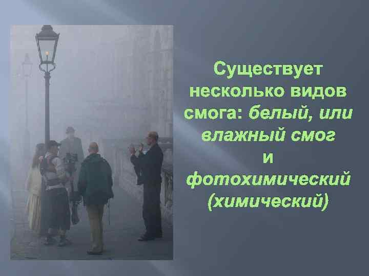 Существует несколько видов смога: белый, или влажный смог и фотохимический (химический)