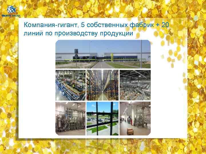 Компания-гигант, 5 собственных фабрик + 20 линий по производству продукции