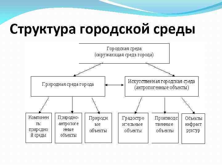Структура городской среды