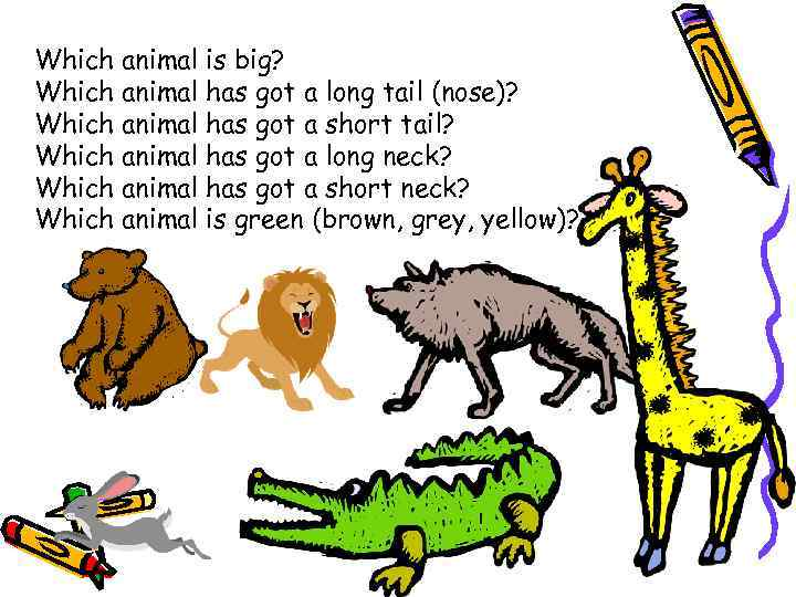 Which animal is big? Which animal has got a long tail (nose)? Which animal