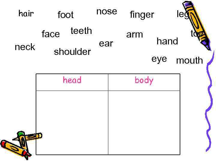 hair foot face neck nose teeth shoulder head ear finger arm leg hand toe