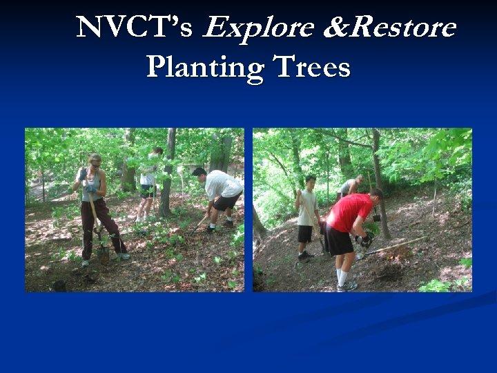 NVCT's Explore &Restore Planting Trees