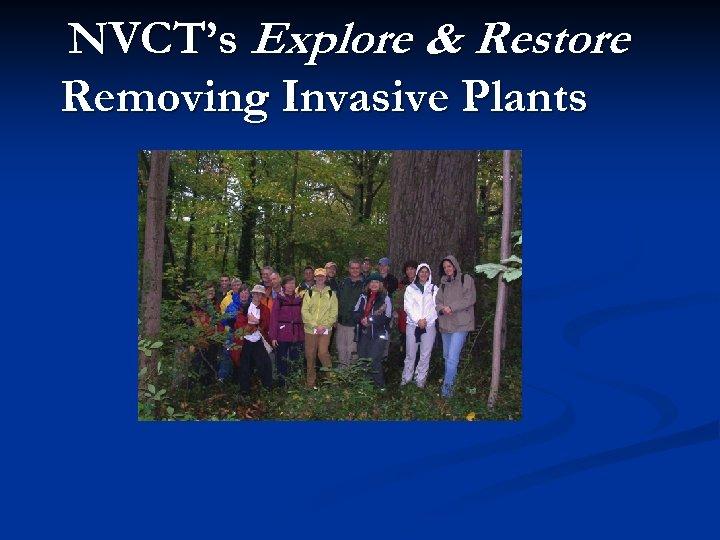 NVCT's Explore & Restore Removing Invasive Plants