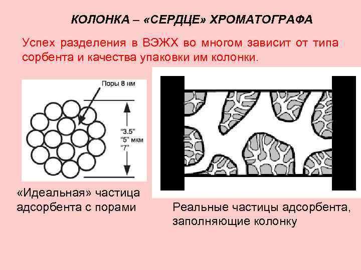КОЛОНКА – «СЕРДЦЕ» ХРОМАТОГРАФА Успех разделения в ВЭЖХ во многом зависит от типа сорбента