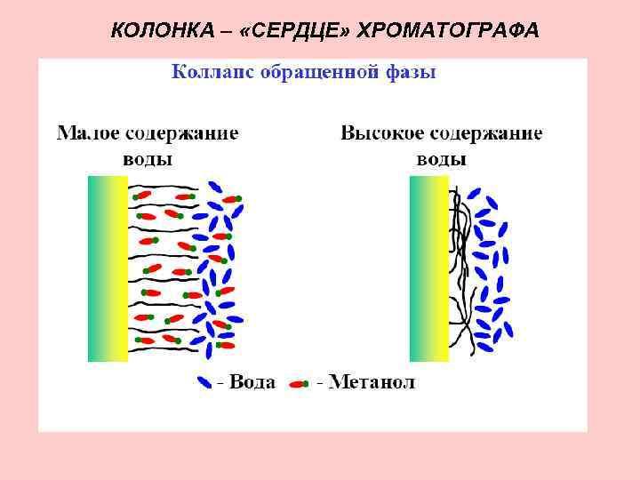 КОЛОНКА – «СЕРДЦЕ» ХРОМАТОГРАФА