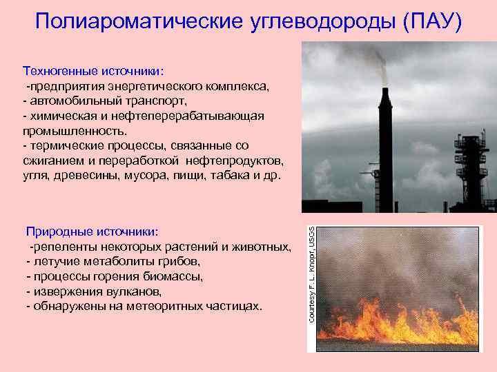 Полиароматические углеводороды (ПАУ) Техногенные источники: -предприятия энергетического комплекса, - автомобильный транспорт, - химическая и