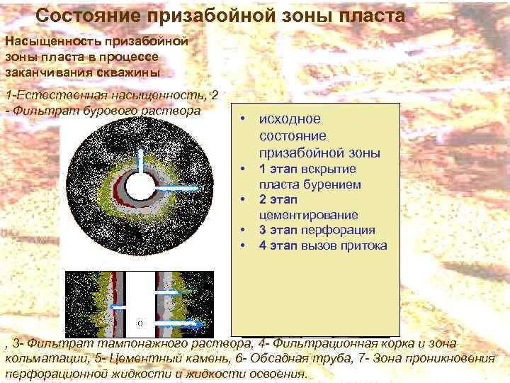 Состояние призабойной зоны пласта Насыщенность призабойной зоны пласта в процессе заканчивания скважины 1 -Естественная