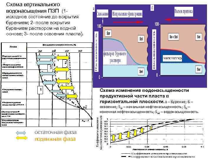 Схема вертикального водонасыщения ПЗП (1 исходное состояние до вскрытия бурением; 2 - после вскрытия