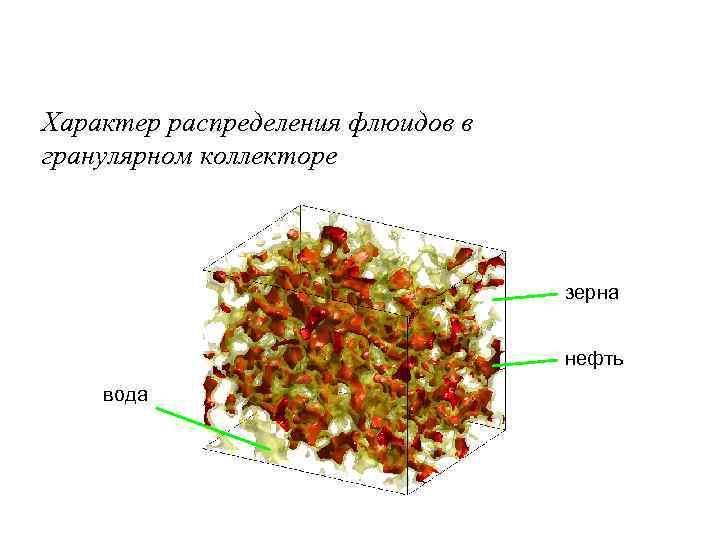 Характер распределения флюидов в гранулярном коллекторе зерна нефть вода