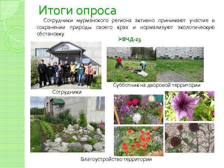 Итоги опроса Сотрудники мурманского региона активно принимают участие в сохранении природы своего края и