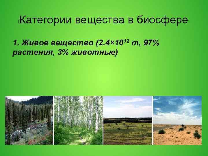 Категории вещества в биосфере 1. Живое вещество (2. 4× 1012 т, 97% растения, 3%