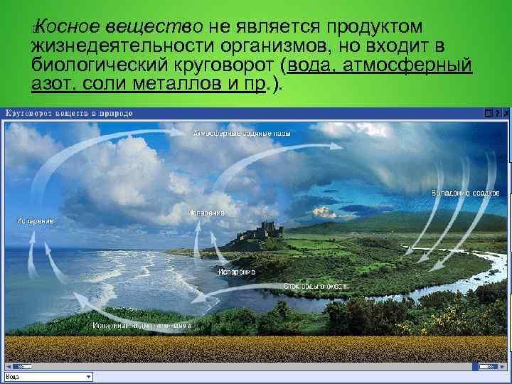 Косное вещество не является продуктом жизнедеятельности организмов, но входит в биологический круговорот (вода, атмосферный