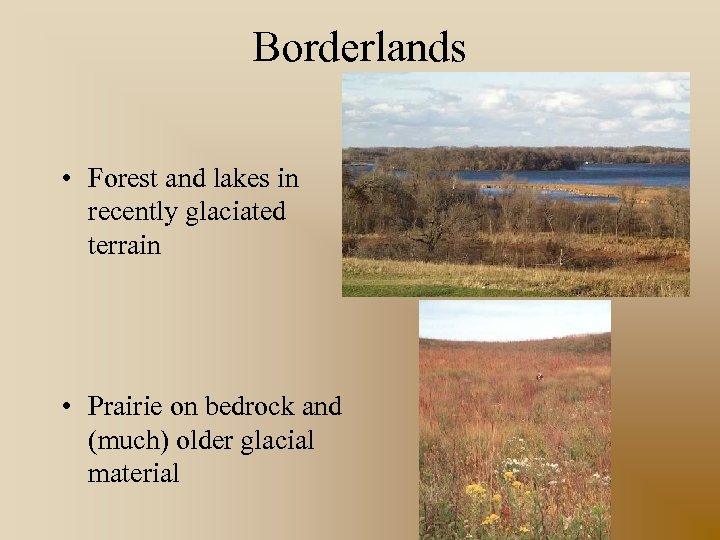 Borderlands • Forest and lakes in recently glaciated terrain • Prairie on bedrock and