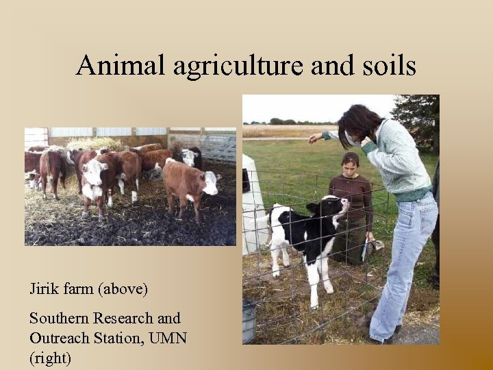 Animal agriculture and soils Jirik farm (above) Southern Research and Outreach Station, UMN (right)