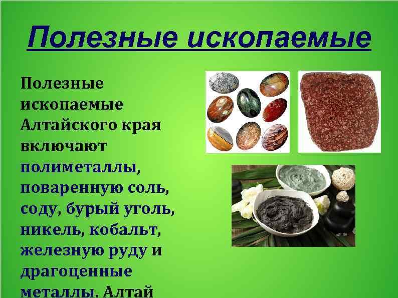 Полезные ископаемые Алтайского края включают полиметаллы, поваренную соль, соду, бурый уголь, никель, кобальт, железную