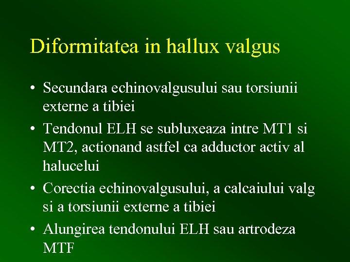 Diformitatea in hallux valgus • Secundara echinovalgusului sau torsiunii externe a tibiei • Tendonul