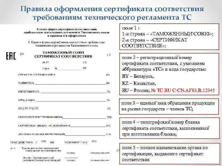 Правила оформления сертификата соответствия требованиям технического регламента ТС поле 1 : 1 -я строка